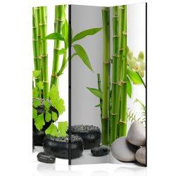 Paraván - Bamboos and Stones [Room Dividers]3 részes  135x172 cm