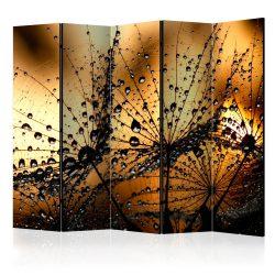 Paraván - Dandelions in the Rain II [Room Dividers] 5 részes 225x172 cm