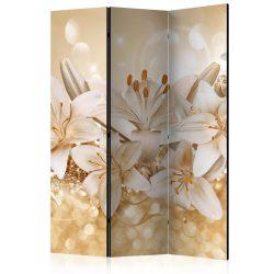 Paraván - Royal Entourage [Room Dividers] 3 részes  135x172 cm