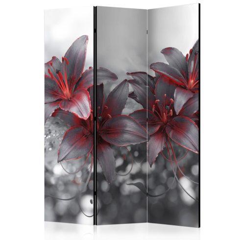 Paraván - Shadow of Passion [Room Dividers] 3 részes  135x172 cm  -  ajandekpont.hu