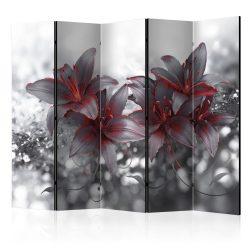 Paraván - Shadow of Passion II [Room Dividers] 5 részes 225x172 cm