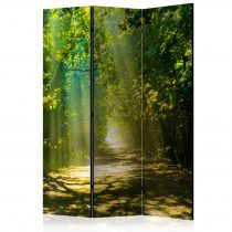 Paraván - Road in Sunlight [Room Dividers] 3 részes  135x172 cm