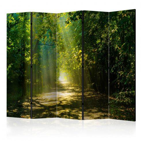 Paraván - Road in Sunlight II [Room Dividers] 5 részes 225x172 cm  -  ajandekpont.hu