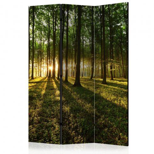 Paraván - Morning in the Forest [Room Dividers] 3 részes  135x172 cm  -  ajandekpont.hu