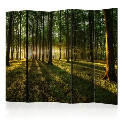 Paraván - Morning in the Forest II [Room Dividers] 5 részes 225x172 cm