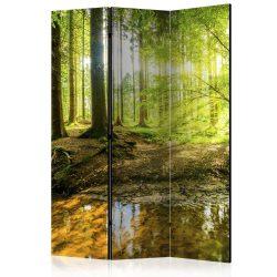 Paraván - Forest Lake [Room Dividers] 3 részes  135x172 cm