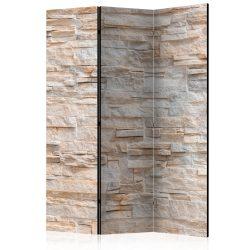 Paraván - Stony Gracefulness [Room Dividers] 3 részes  135x172 cm