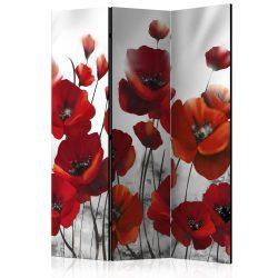 Paraván - Poppies in the Moonlight [Room Dividers] 3 részes  135x172 cm