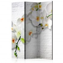 Paraván - The Urban Orchid [Room Dividers] 3 részes  135x172 cm
