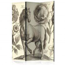 Paraván - Horse [Room Dividers] 3 részes  135x172 cm  -  ajandekpont.hu