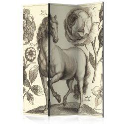 Paraván - Horse [Room Dividers] 3 részes  135x172 cm
