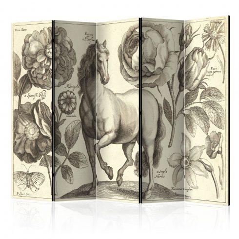 Paraván - Horse II [Room Dividers] 5 részes 225x172 cm  -  ajandekpont.hu