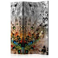 Paraván - Enchanted Morning Dew [Room Dividers] 3 részes  135x172 cm