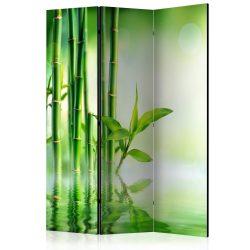 Paraván - Green Bamboo [Room Dividers] 3 részes  135x172 cm