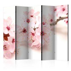 Paraván -  Cherry Blossom II [Room Dividers] 5 részes 225x172 cm