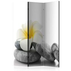 Paraván - White Lotus [Room Dividers] 3 részes  135x172 cm