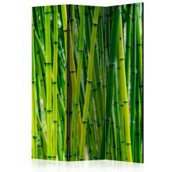 Paraván - Bamboo Forest [Room Dividers] 3 részes  135x172 cm