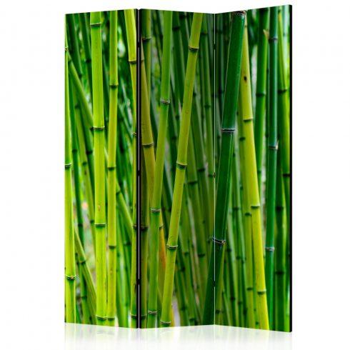 Paraván - Bamboo Forest [Room Dividers] 3 részes  135x172 cm  -  ajandekpont.hu