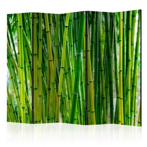 Paraván - Bamboo Forest II [Room Dividers] 5 részes 225x172 cm  -  ajandekpont.hu