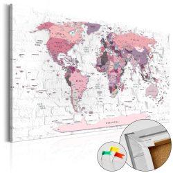 Kép parafán - Pink Frontiers [Cork Map]
