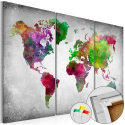 Kép parafán - Diversity of World [Cork Map]
