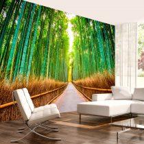 Fotótapéta - Bamboo Forest