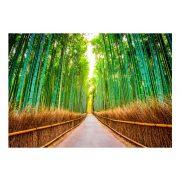 Fotótapéta - Bamboo Forest  -  ajandekpont.hu