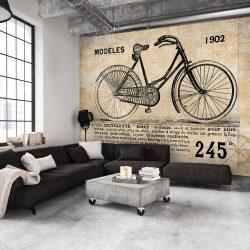 Fotótapéta - Old School Bicycle  7 féle méretben