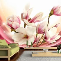 Fotótapéta -  Magnolia In Rays