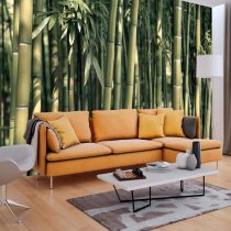 Fotótapéta  -  Bamboo Exotic - ajandekpont.hu