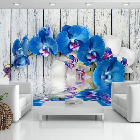 Fotótapéta - Cobaltic orchid  -  ajandekpont.hu