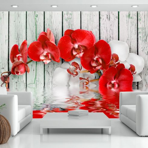 Fotótapéta  -  Ruby orchid - ajandekpont.hu