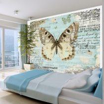 Fotótapéta - Postcard with butterfly