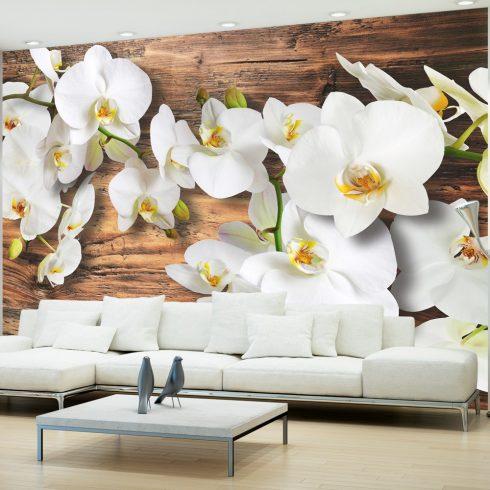 Fotótapéta - Forest Orchid  -  ajandekpont.hu