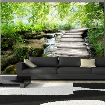 Fotótapéta - Forest path