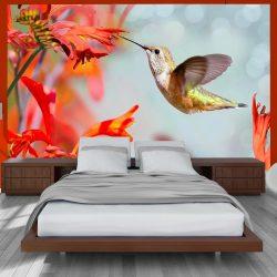 Fotótapéta - Hummingbird flight