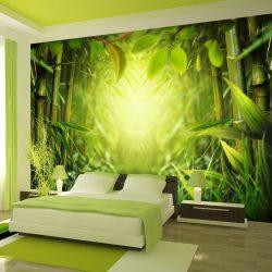 Fotótapéta - Forest fairy