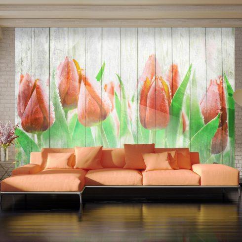 Fotótapéta  -  Red tulips on wood - ajandekpont.hu