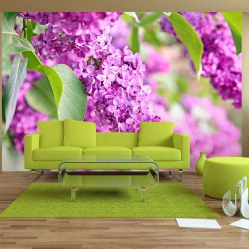 Fotótapéta - Lilac flowers  -  ajandekpont.hu