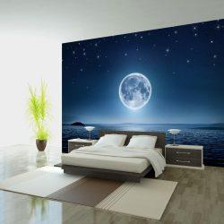 Fotótapéta - Moonlit night