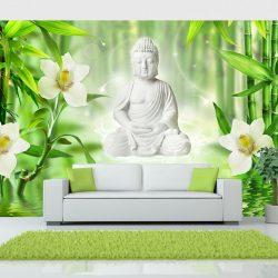 Fotótapéta - Buddha and nature