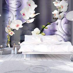 Fotótapéta - Orchids