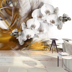 Fotótapéta - Orchid on fire