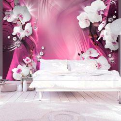 Fotótapéta - Pink Explosion of Color