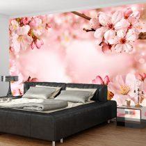 Fotótapéta  -  Magical Cherry Blossom - ajandekpont.hu