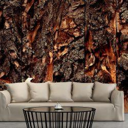Fotótapéta - Time Carved in the Tree  50 x1000 cm