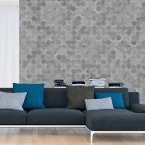 Fotótapéta - Grey Beauty  50 x1000 cm