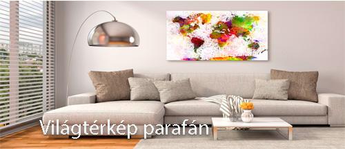 Világtérkép parafán